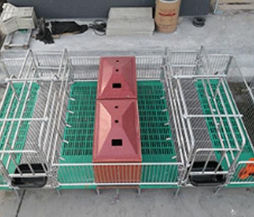 母猪产床定位栏
